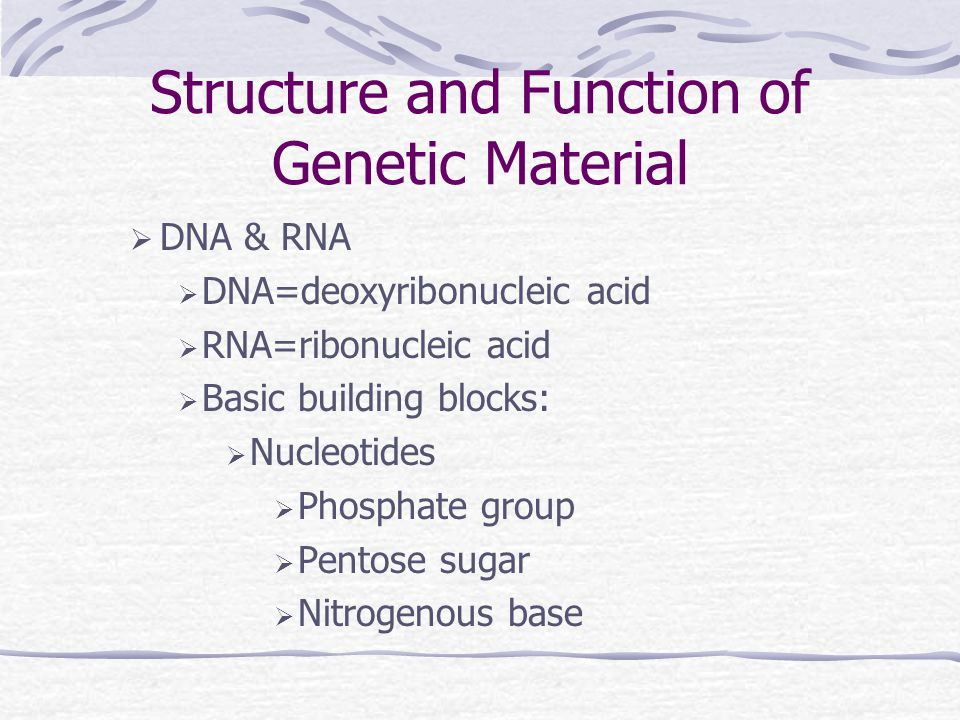 Genetic Transfer in Bacteria Genetic transfer-results in genetic variation Genetic variation-needed for evolution Three ways: Transformation: genes transferred from one bacterium to another as naked DNA Conjugation: plasmids transferred 1 bacteria to another via a pilus Transduction: DNA transferred from 1 bacteria to another by a virus