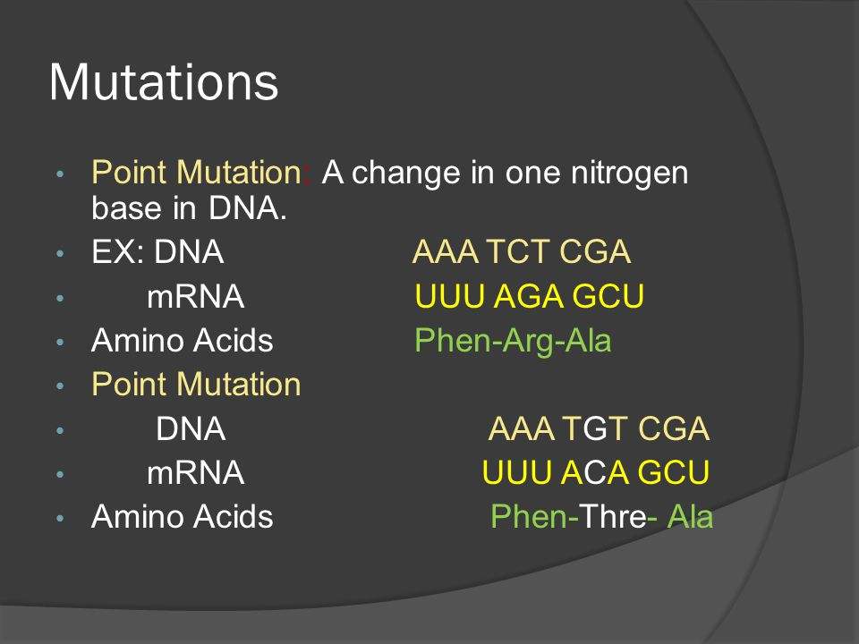 Mutations Point Mutation: A change in one nitrogen base in DNA. EX: DNA AAA TCT CGA mRNA UUU AGA GCU Amino Acids Phen-Arg-Ala Point Mutation DNA AAA T