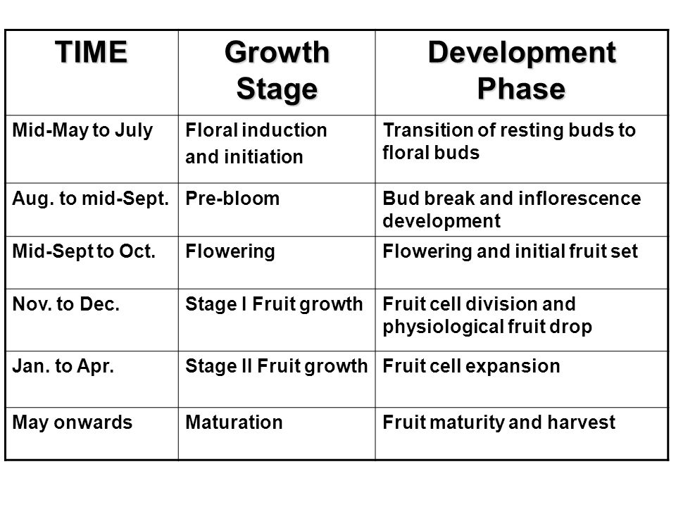 TIME Growth Stage Development Phase Mid-May to JulyFloral induction and initiation Transition of resting buds to floral buds Aug.