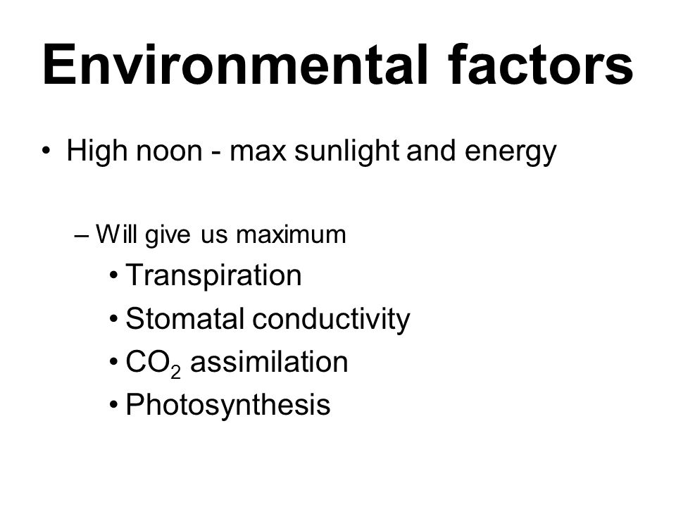 Environmental factors High noon - max sunlight and energy –Will give us maximum Transpiration Stomatal conductivity CO 2 assimilation Photosynthesis