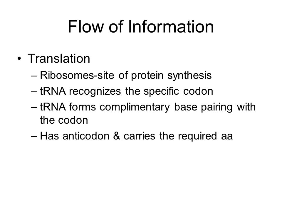 Flow of Information Translation –Ribosomes-site of protein synthesis –tRNA recognizes the specific codon –tRNA forms complimentary base pairing with the codon –Has anticodon & carries the required aa