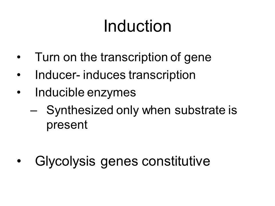 Induction Turn on the transcription of gene Inducer- induces transcription Inducible enzymes –Synthesized only when substrate is present Glycolysis genes constitutive