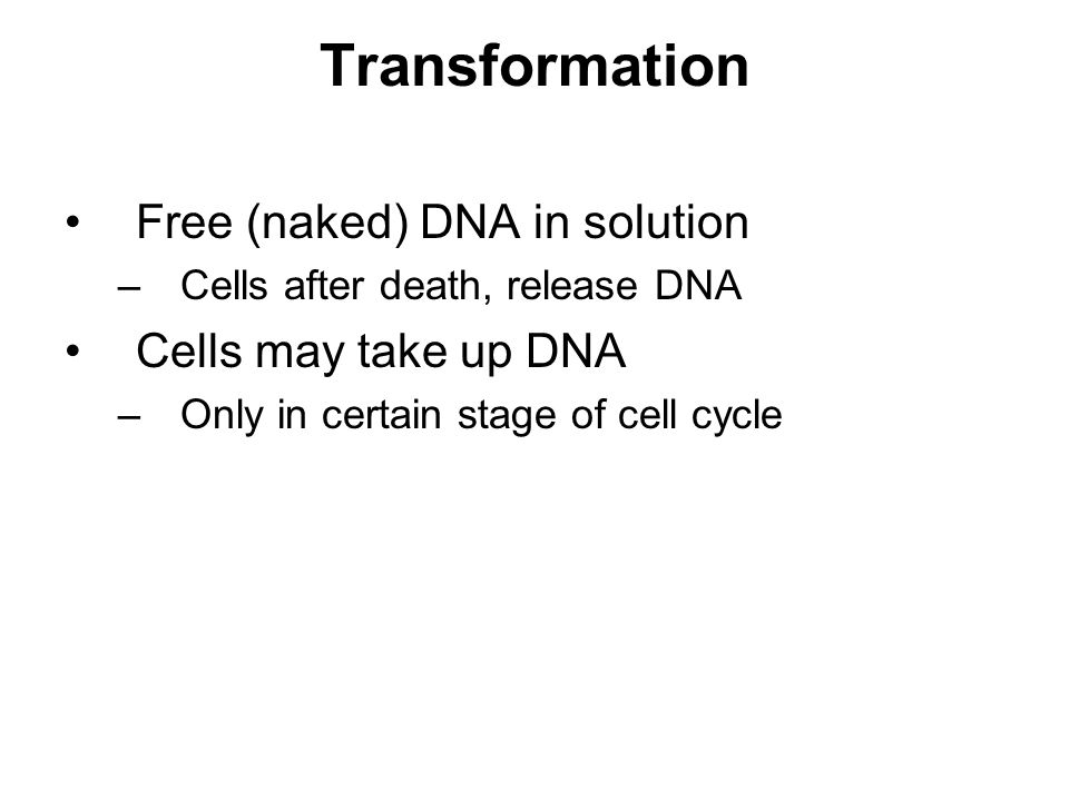 Transformation Free (naked) DNA in solution –Cells after death, release DNA Cells may take up DNA –Only in certain stage of cell cycle