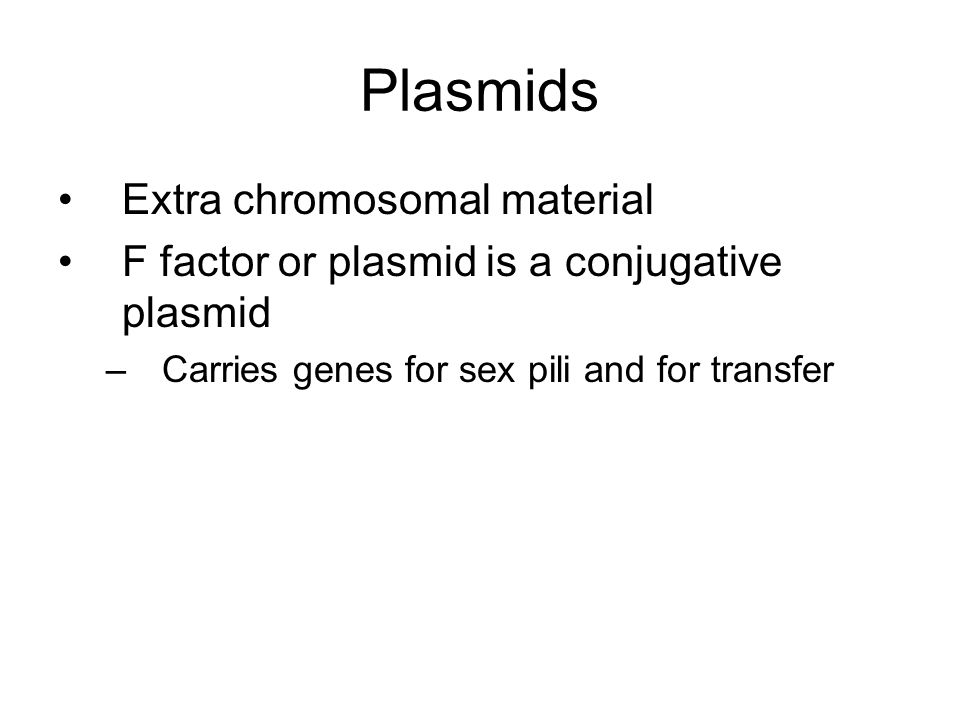 Plasmids Extra chromosomal material F factor or plasmid is a conjugative plasmid –Carries genes for sex pili and for transfer