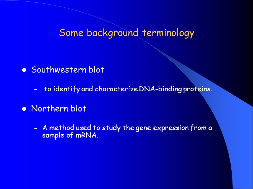 Some background terminology Southwestern blot – to identify and characterize DNA-binding proteins. Northern blot – A method used to study the gene exp