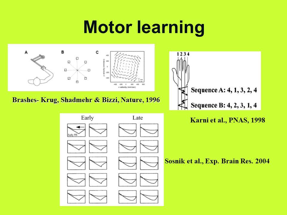 Motor learning Brashes- Krug, Shadmehr & Bizzi, Nature, 1996 Karni et al., PNAS, 1998 Sosnik et al., Exp.