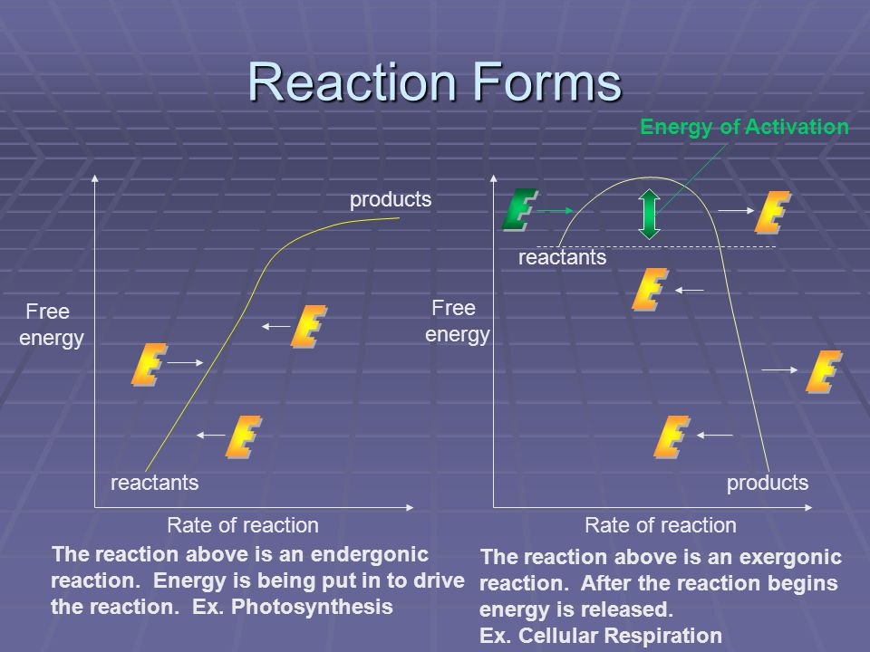 Reaction Forms Free energy Free energy Rate of reaction reactants products Energy of Activation The reaction above is an endergonic reaction. Energy i