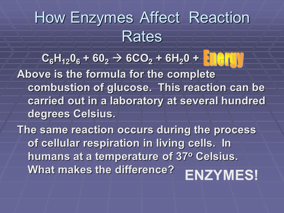 Enzyme Structure  All enzymes have an active site where the substrate binds.