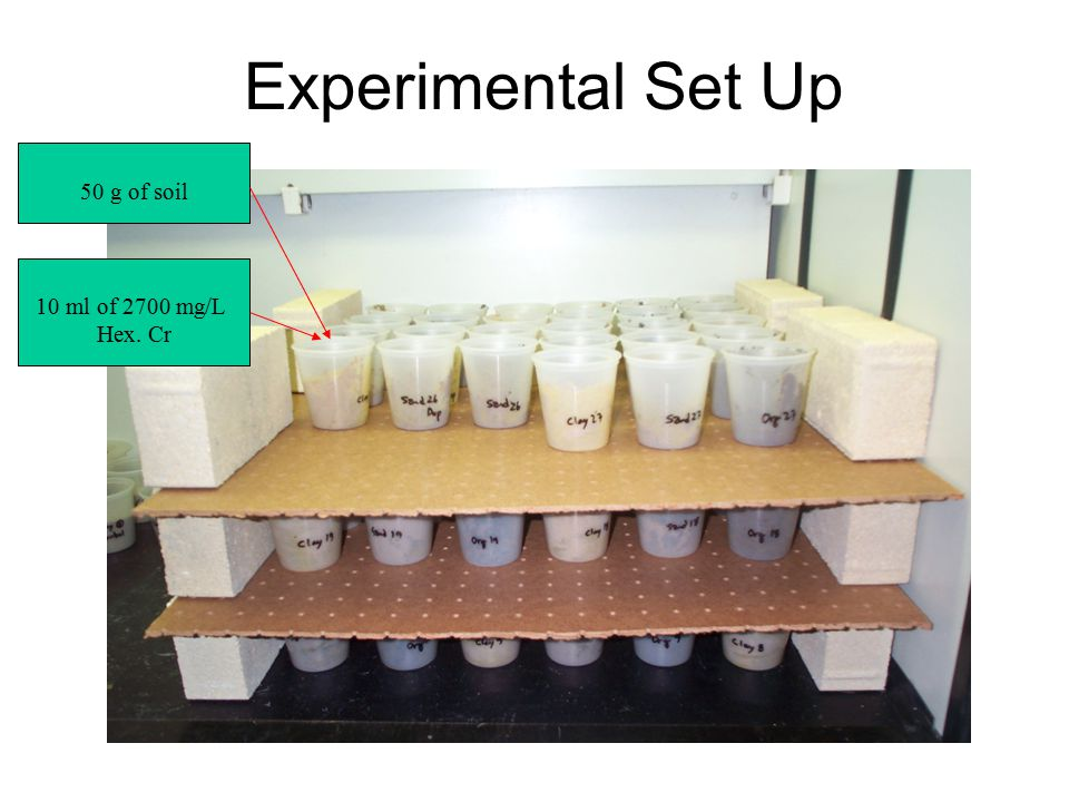 Experimental Set Up 50 g of soil 10 ml of 2700 mg/L Hex. Cr