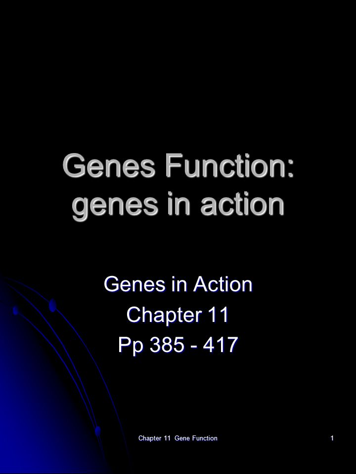 Chapter 11 Gene Function1 Genes Function: genes in action Genes in Action Chapter 11 Pp 385 - 417