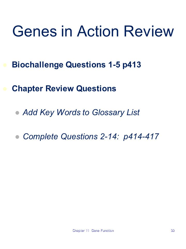Chapter 11 Gene Function30 Genes in Action Review Biochallenge Questions 1-5 p413 Chapter Review Questions Add Key Words to Glossary List Complete Questions 2-14: p414-417