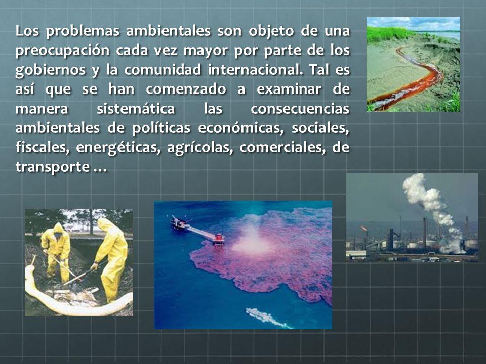 Los problemas ambientales son objeto de una preocupación cada vez mayor por parte de los gobiernos y la comunidad internacional.
