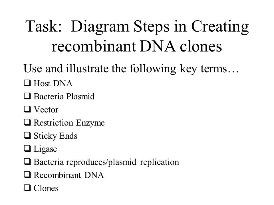 Task: Diagram Steps in Creating recombinant DNA clones Use and illustrate the following key terms…  Host DNA  Bacteria Plasmid  Vector  Restrictio