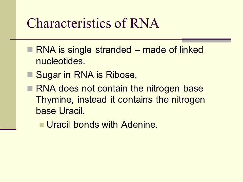 Characteristics of RNA RNA is single stranded – made of linked nucleotides.