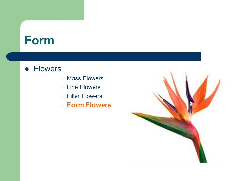 Form Flowers – Mass Flowers – Line Flowers – Filler Flowers – Form Flowers
