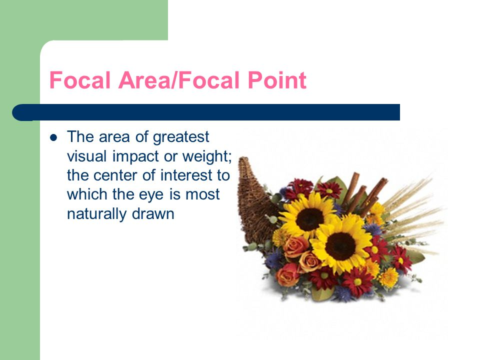 Focal Area/Focal Point The area of greatest visual impact or weight; the center of interest to which the eye is most naturally drawn