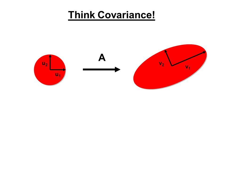 Think Covariance! u1u1 u2u2 v1v1 v2v2 A
