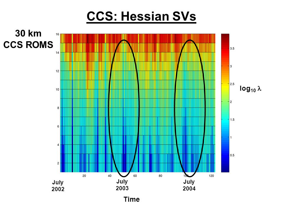 CCS: Hessian SVs log 10 Time July 2002 July 2003 July 2004 30 km CCS ROMS