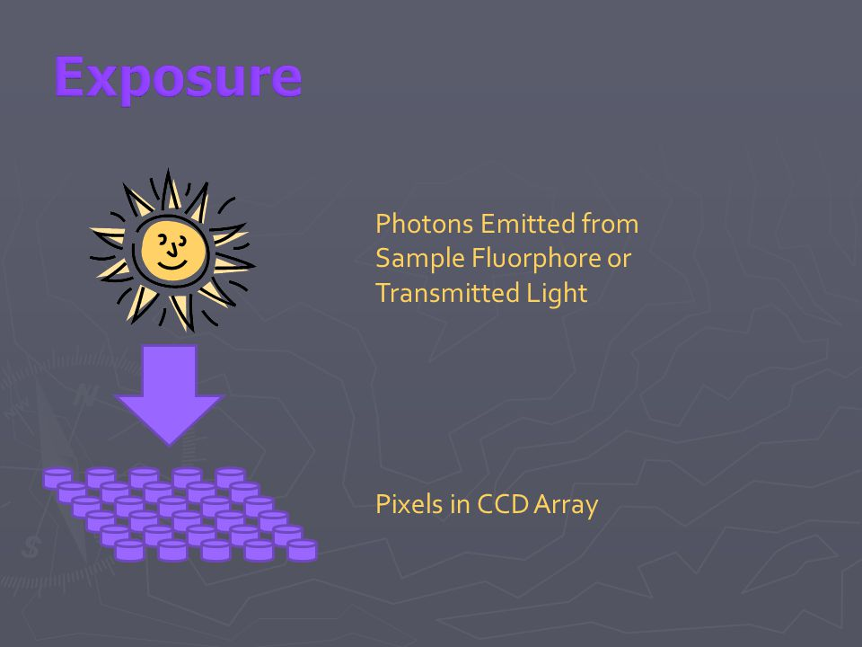 Photons Emitted from Sample Fluorphore or Transmitted Light Pixels in CCD Array