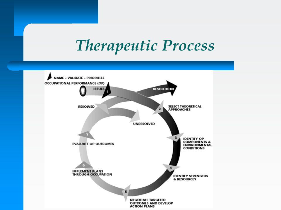 Therapeutic Process