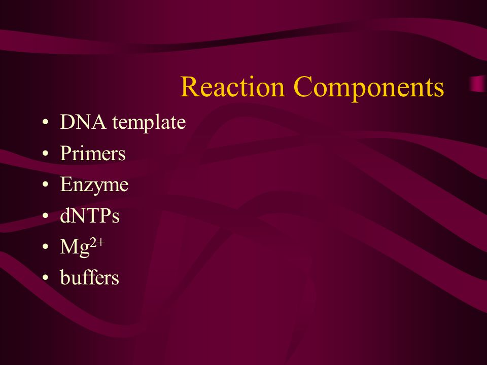 Reaction Components DNA template Primers Enzyme dNTPs Mg 2+ buffers