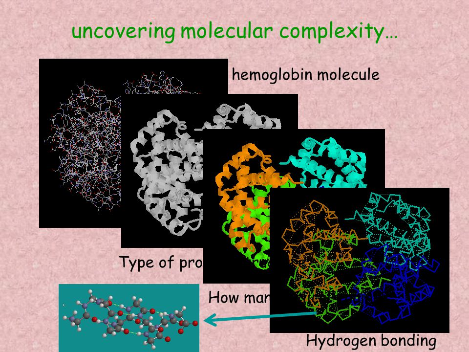 uncovering molecular complexity… hemoglobin molecule Type of protein structure.