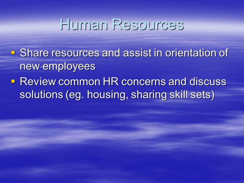 Human Resources  Share resources and assist in orientation of new employees  Review common HR concerns and discuss solutions (eg.
