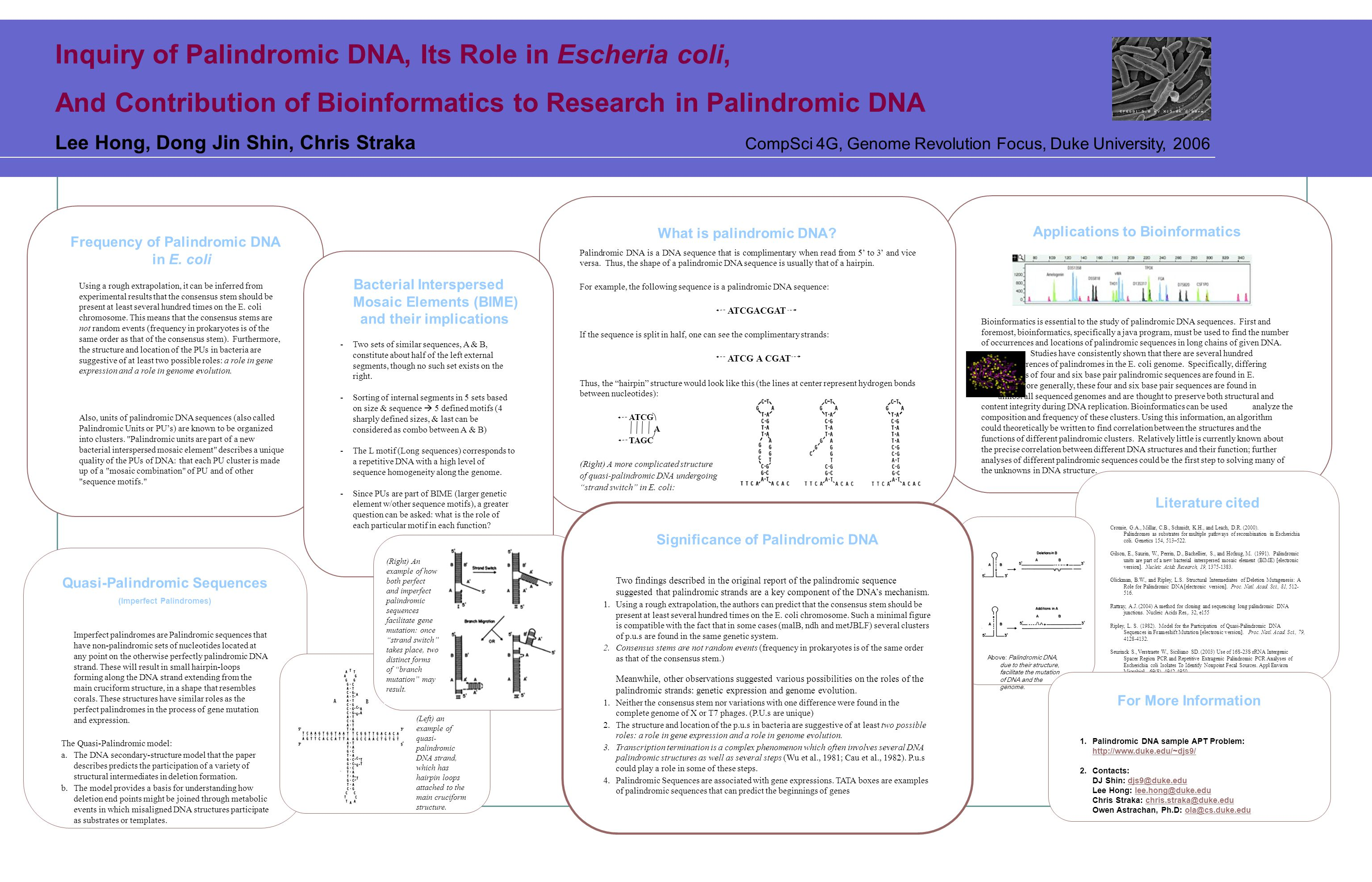 Applications to Bioinformatics Bioinformatics is essential to the study of palindromic DNA sequences.