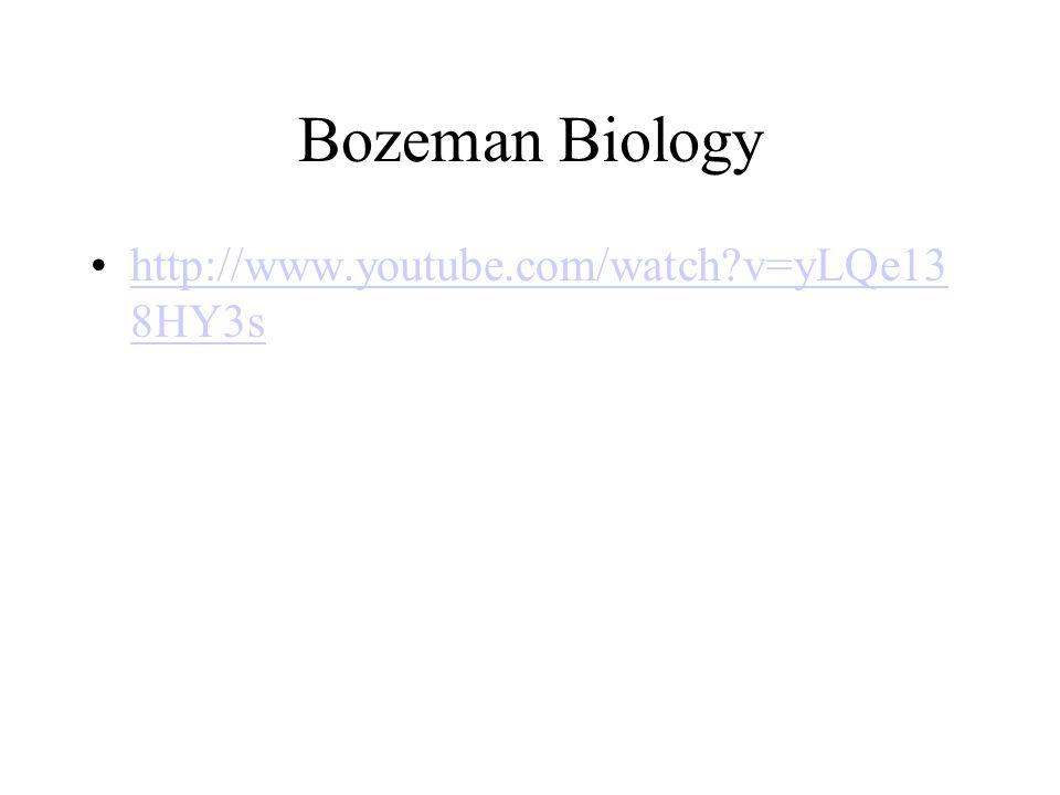 Bozeman Biology http://www.youtube.com/watch?v=yLQe13 8HY3shttp://www.youtube.com/watch?v=yLQe13 8HY3s