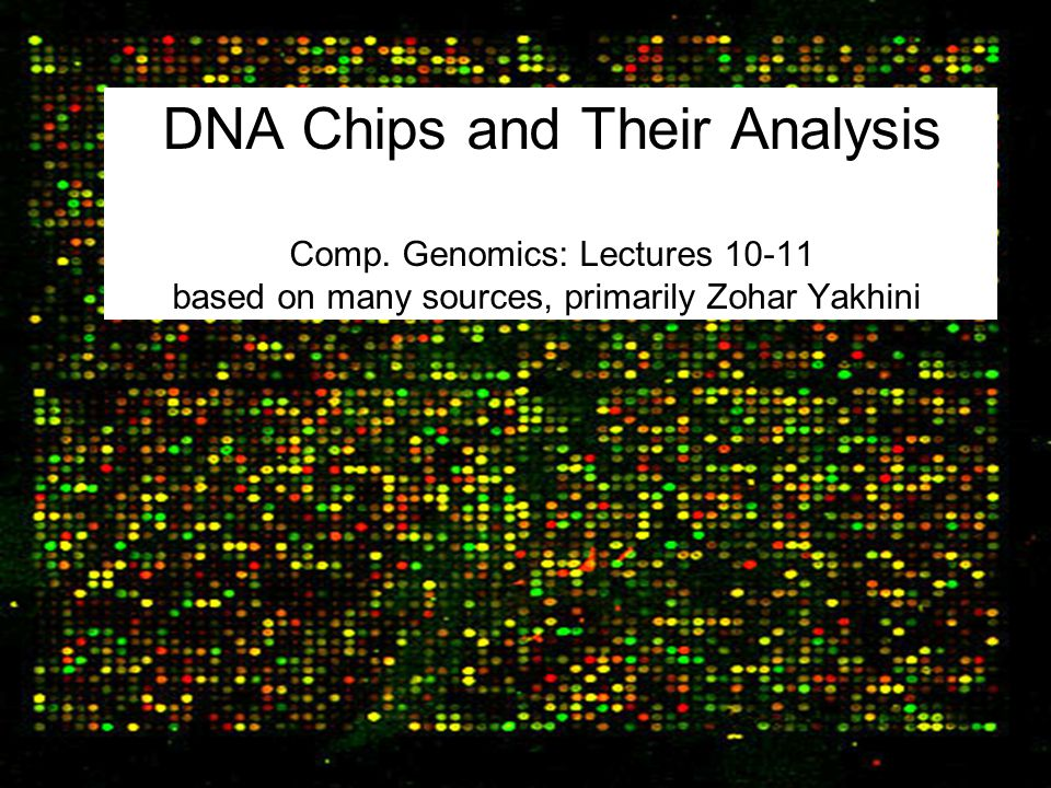 DNA Chips and Their Analysis Comp. Genomics: Lectures 10-11 based on many sources, primarily Zohar Yakhini
