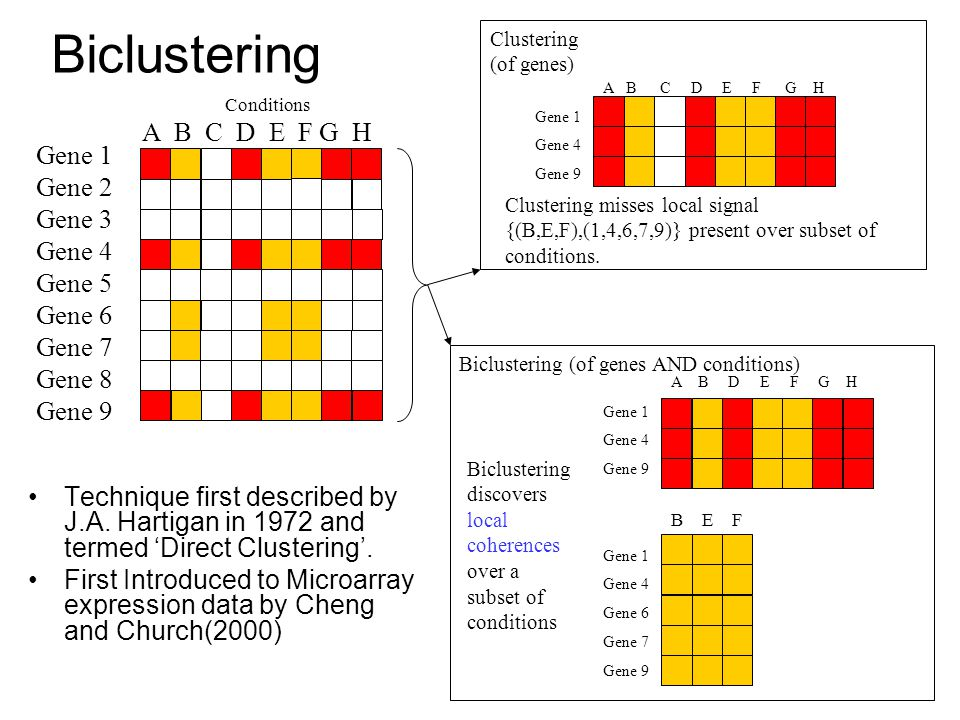 Biclustering Technique first described by J.A. Hartigan in 1972 and termed 'Direct Clustering'.