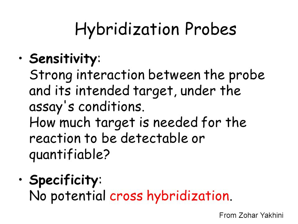 Hybridization Probes Sensitivity: Strong interaction between the probe and its intended target, under the assay's conditions. How much target is neede