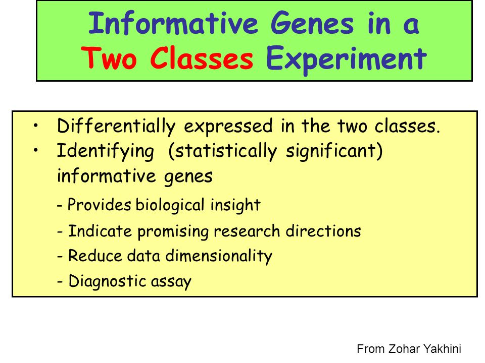 Informative Genes in a Two Classes Experiment Differentially expressed in the two classes. Identifying (statistically significant) informative genes -