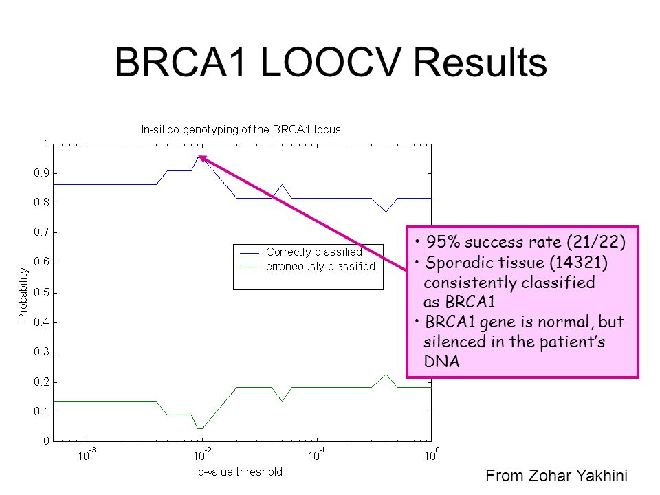 BRCA1 LOOCV Results 95% success rate (21/22) Sporadic tissue (14321) consistently classified as BRCA1 BRCA1 gene is normal, but silenced in the patient's DNA From Zohar Yakhini