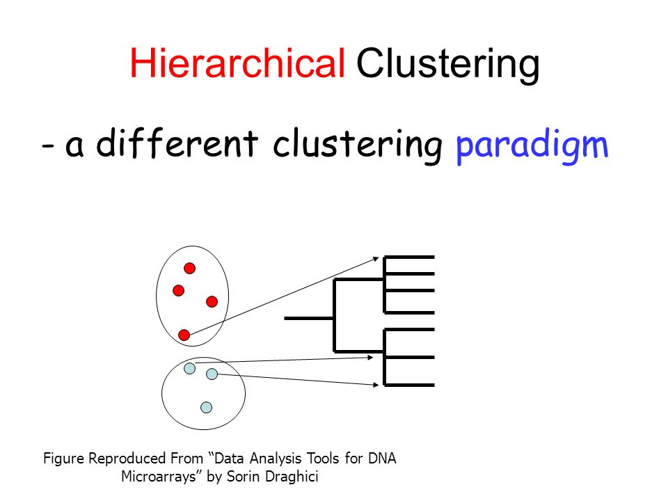 Hierarchical Clustering -a different clustering paradigm Figure Reproduced From Data Analysis Tools for DNA Microarrays by Sorin Draghici