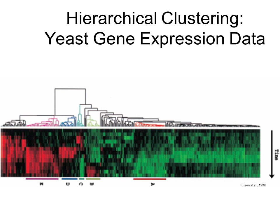 Hierarchical Clustering: Yeast Gene Expression Data Eisen et al., 1998