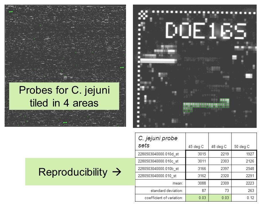 C. jejuni probe sets 45 deg C48 deg C50 deg C 2280503040000.010d_st301522191927 2280503040000.010c_st301123032126 2280503040000.010b_st316623972548 22