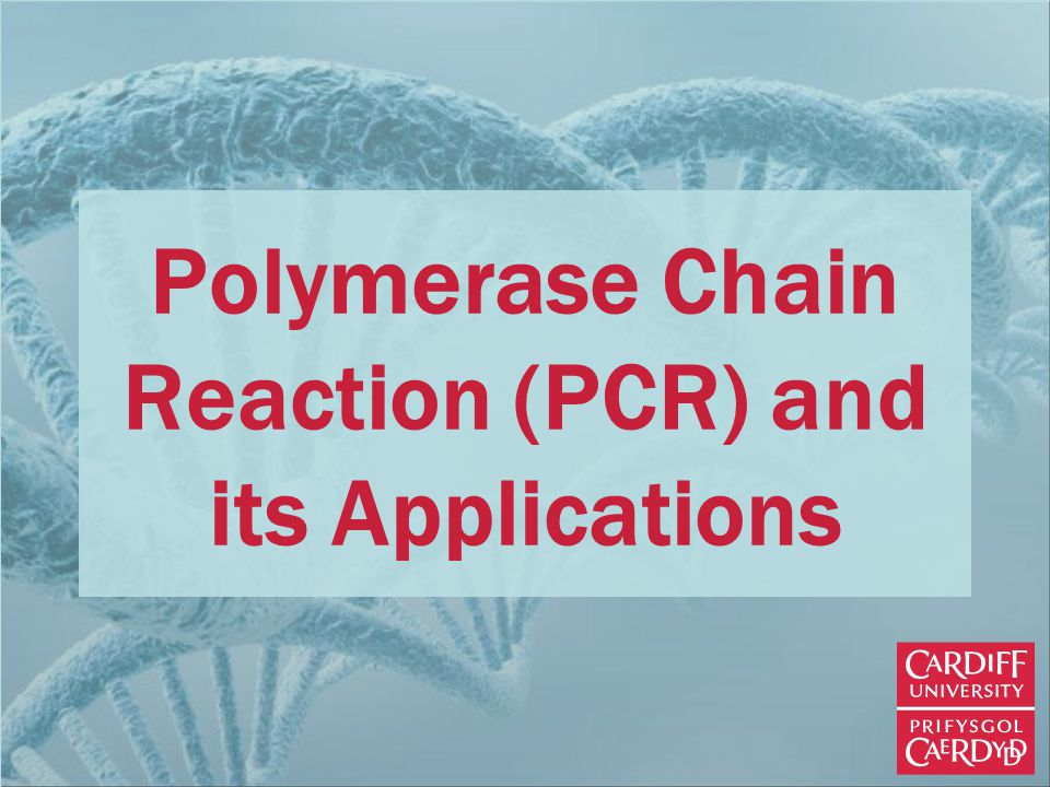 Polymerase Chain Reaction (PCR) and its Applications