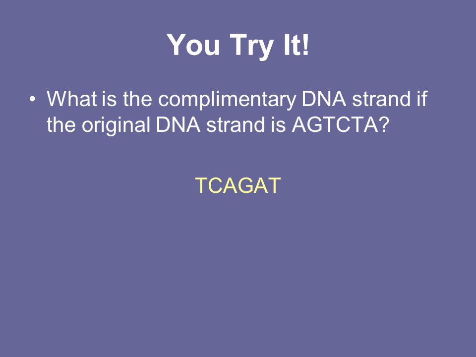 You Try It! What is the complimentary DNA strand if the original DNA strand is AGTCTA? TCAGAT