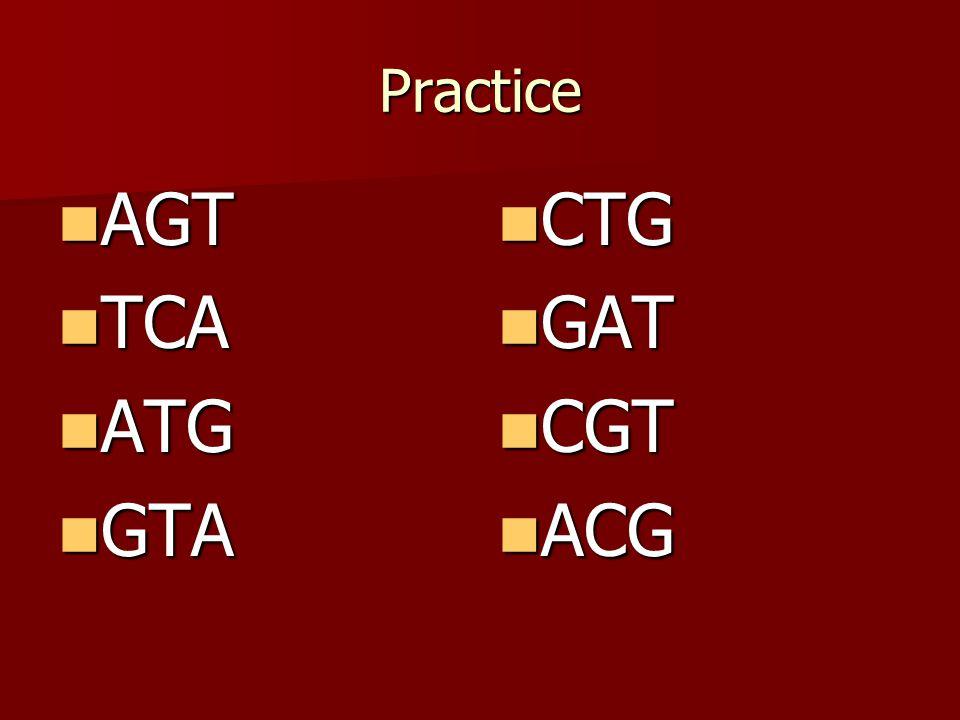 Example ATG TAC ACT –U–U–U–UGA –A–A–A–ACT CTA GAT TGA –A–ACU –T–TGA