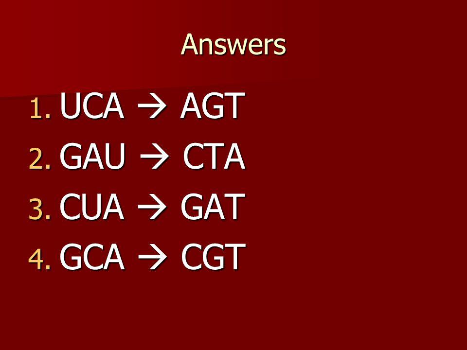 1. TCA 2. GAC 3. TGA 4. ACT Answers