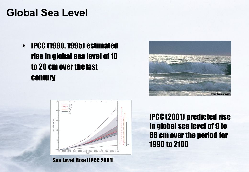 Global Sea Level IPCC (1990, 1995) estimated rise in global sea level of 10 to 20 cm over the last century IPCC (2001) predicted rise in global sea le