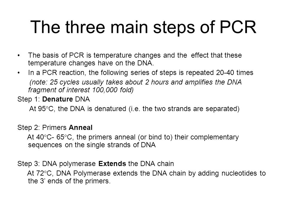 The three main steps of PCR The basis of PCR is temperature changes and the effect that these temperature changes have on the DNA. In a PCR reaction,
