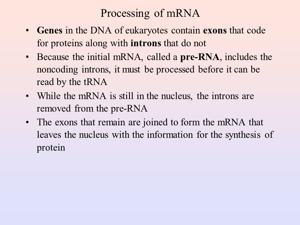 RNA Polymerase During transcription, RNA polymerase moves along the DNA template in the 3'-5'direction to synthesize the corresponding mRNA The mRNA is released at the termination point