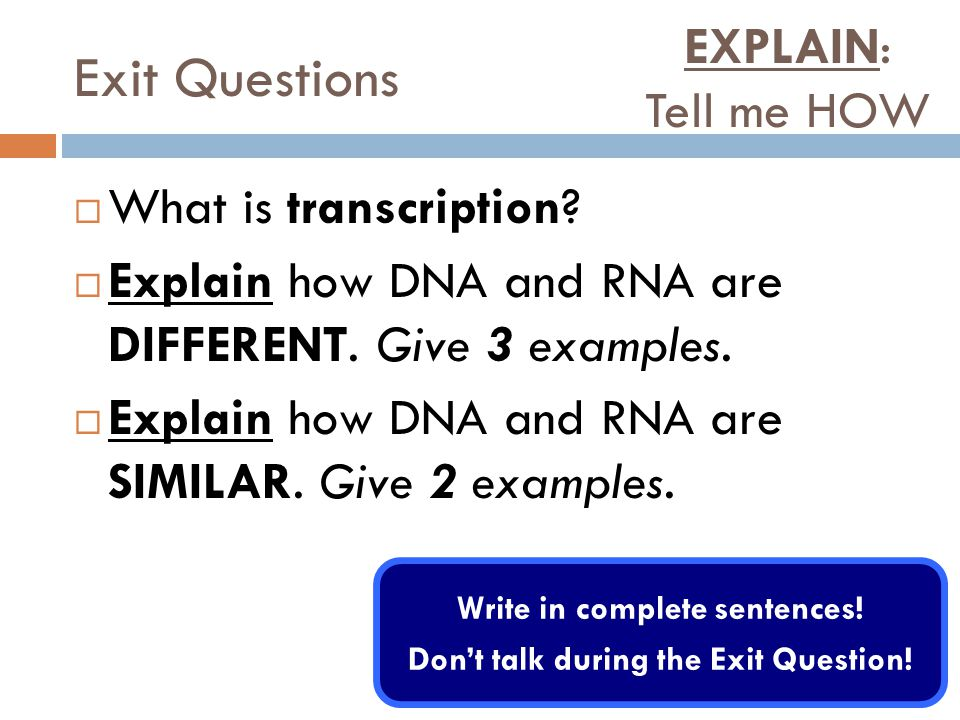 Exit Questions  What is transcription.  Explain how DNA and RNA are DIFFERENT.