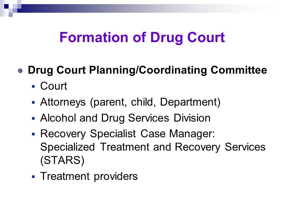 Drug Court History l 1992 – Criminal Justice Cabinet Formation l 1996 – Adult Criminal Drug Court Started l Mid-1990s – Enhanced AOD/CWS Linkages l 19