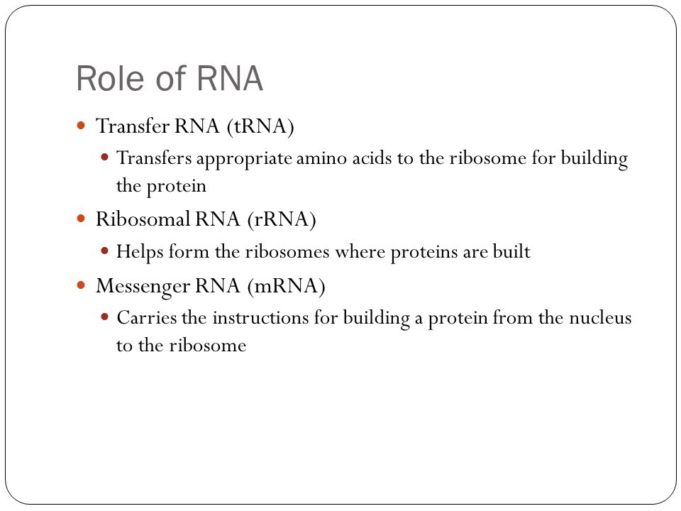 Transcription and Translation Transcription Transfer of information from DNA's base sequence to the complimentary base sequence of mRNA Three-base sequences on mRNA are called codons