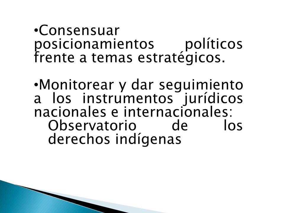 Consensuar posicionamientos políticos frente a temas estratégicos.