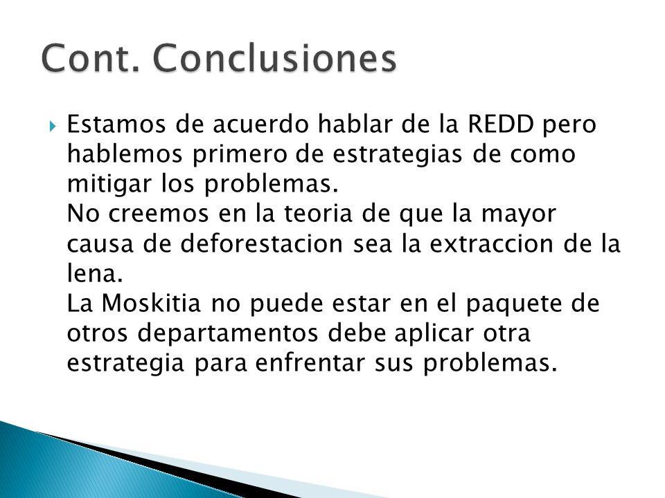  Estamos de acuerdo hablar de la REDD pero hablemos primero de estrategias de como mitigar los problemas.