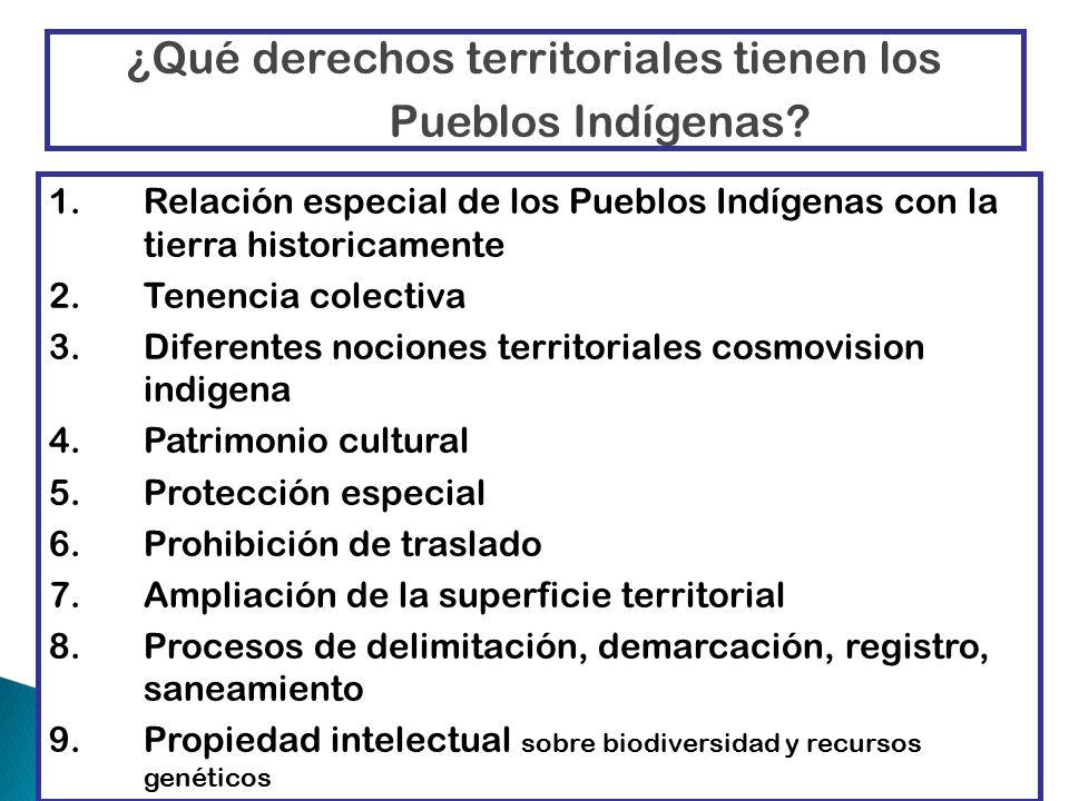 ¿Qué derechos territoriales tienen los Pueblos Indígenas.
